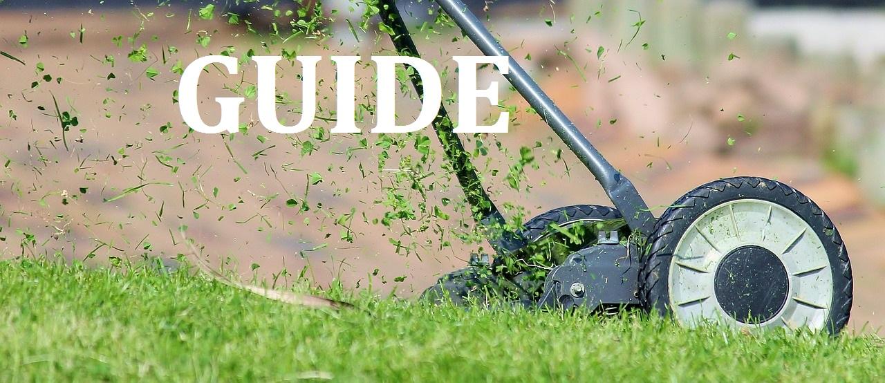Cool GUIDE | Sådan får du den flotteste græsplæne i hele nabolaget DB12