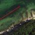 Fange havørred | Sådan finder du ørreden ved kysten
