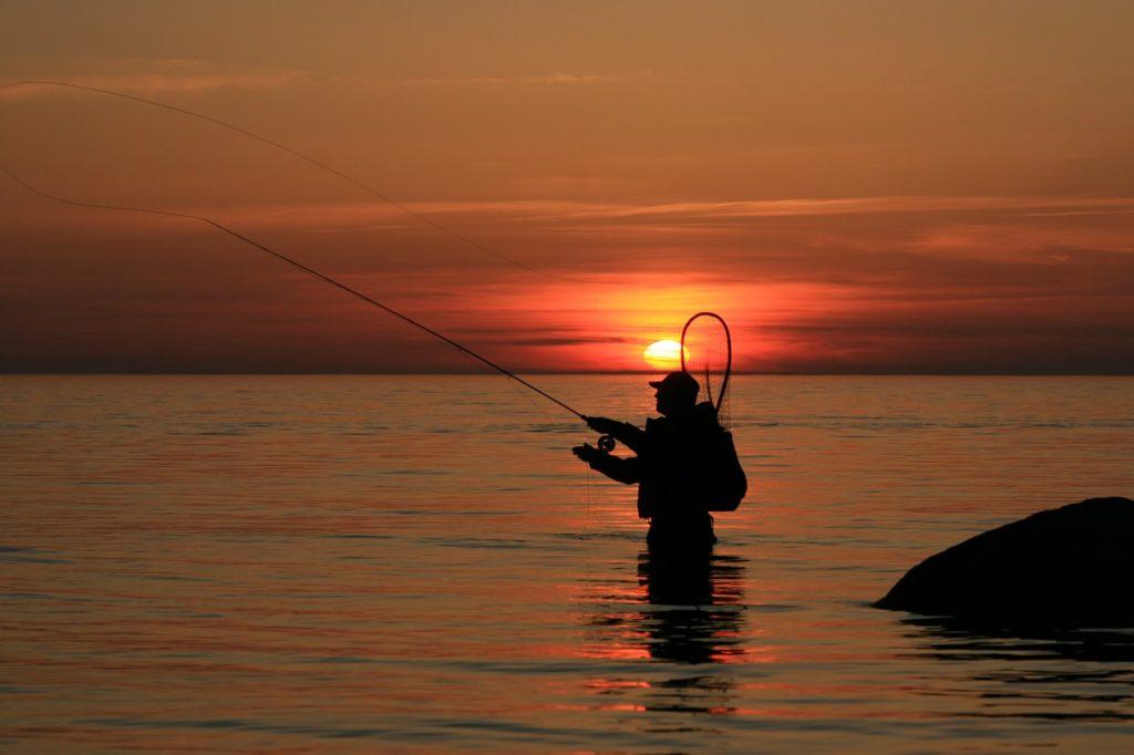 Find de gode fiskespots