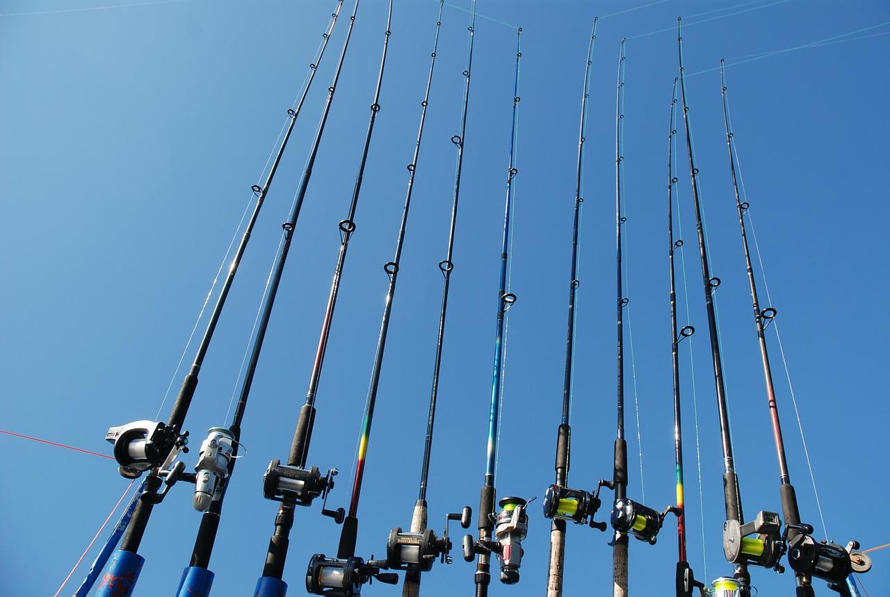 Bedste fiskestang til prisen