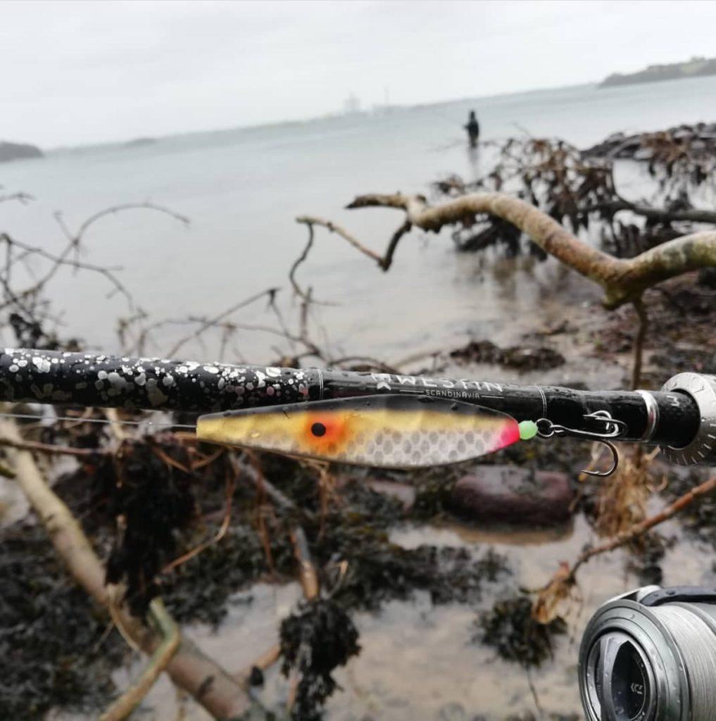 forårsfiskeri efter havørred